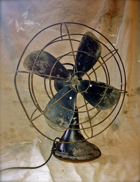 Black Fan 1